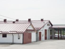 FERMA DE VACI - Seleuș